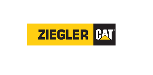 Twincities2016zieglercat