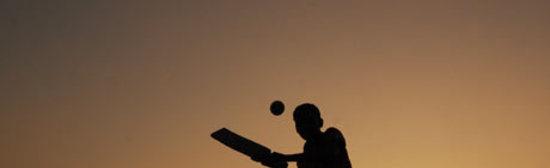 Playing cricket at dusk i 001
