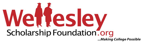 Wsf logo with tagline 1036x316