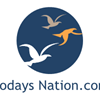 Todays nation logo