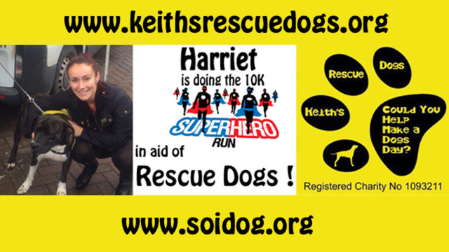 Keith S Rescue Dogs