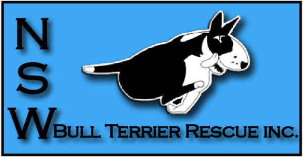 NSW Bull Terrier Rescue Inc