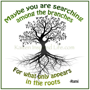Maybe you are searching in the branches for what only appears in the roots.  - Rumi