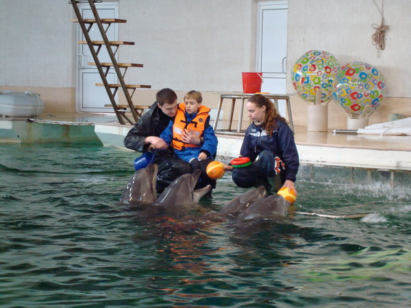 Aronas in Dolphin Therapy