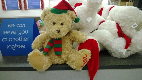 The bears that were purchased last year from Kmart