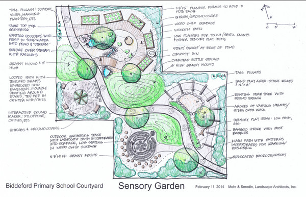 The senses seeds and special students by lori flynn for Sensory garden designs