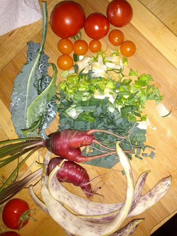 All from the garden taste a rainbow of health