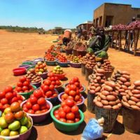 Africa Food Prize 2017: Leading the Effort to Change the Reality of Farming in Africa