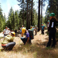 Applications Open for CTFS-ForestGEO Research Grants Program 2017!