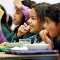 Grants for Addressing Nutritional Disparities, Improving Nutrition, and Increasing Food Security in United States