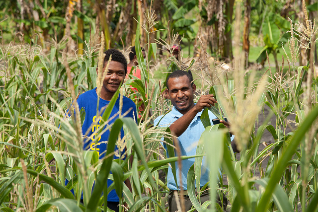 youth integration in agriculture Are prospects of rural youth employment in africa a mirage integration into emerging strong negative preferences/attitudes of the youth towards agriculture.