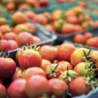 USDA/NIFA: Inviting Applications for Community Food Projects Competitive Grant Program