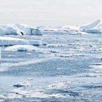 KEEN: Seeking Applications for Critical Coastlines Grant Program