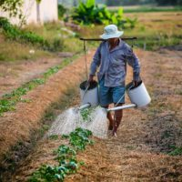 Hindustan Unilever Foundation: Supporting Solutions that can Transform India's Water Footprint in Agriculture