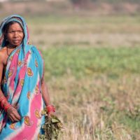 UNDP seeking Proposals for Livelihoods Promotion - India