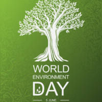 The Most Inspiring Grants for NGOs on this World Environment Day