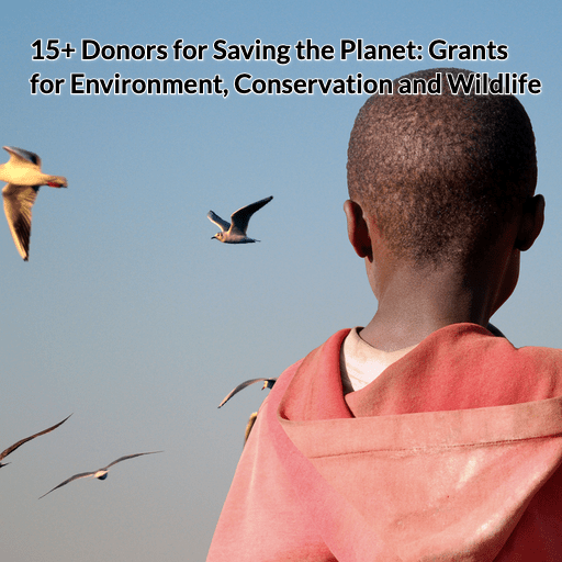 15+ Donors for Saving the Planet: Grants for Environment, Conservation and Wildlife