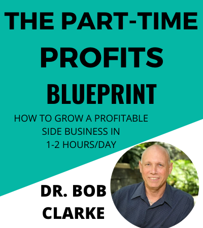 PT Profits Blueprint 4