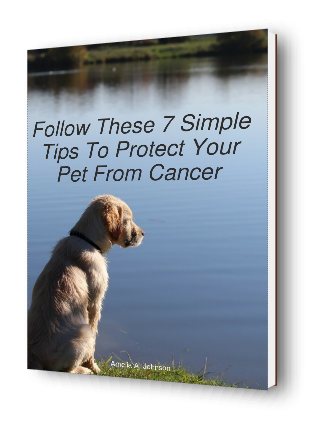 Follow These 7 Simple Tips