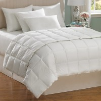 Mattress Protectors & Pillows