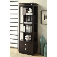 HOME OFFICE : BOOKCASES - Contemporary Cappuccino Bookcase