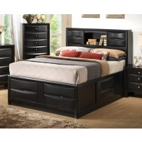 BRIANA COLLECTION - Briana Transitional Black Queen Bed