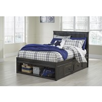 Jaysom Twin Panel Bed with Storage