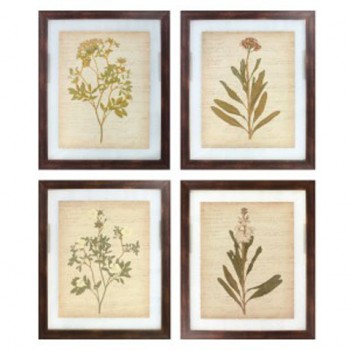 Dyani - Multi - Wall Art Set (4/CN)