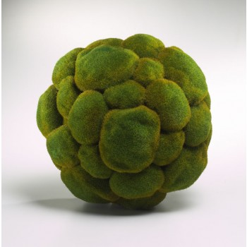 Moss Spheres 12