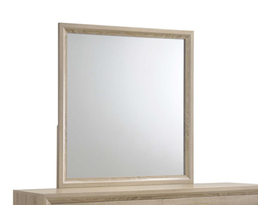 VERNON COLLECTION - Vernon Transitional Mirror