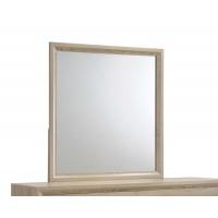 VERNON COLLECTION - Vernon Transitional Mirror