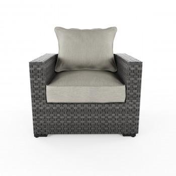 Spring Dew - Gray - Lounge Chair w/Cushion (1/CN)