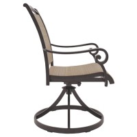 Bass Lake - Beige/Brown - Sling Swivel Chair (2/CN)