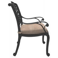 Rose View - Brown - Chair with Cushion (2/CN)