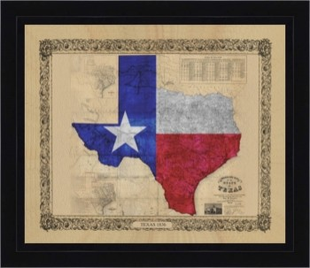 Texas Color Map 44 X 51