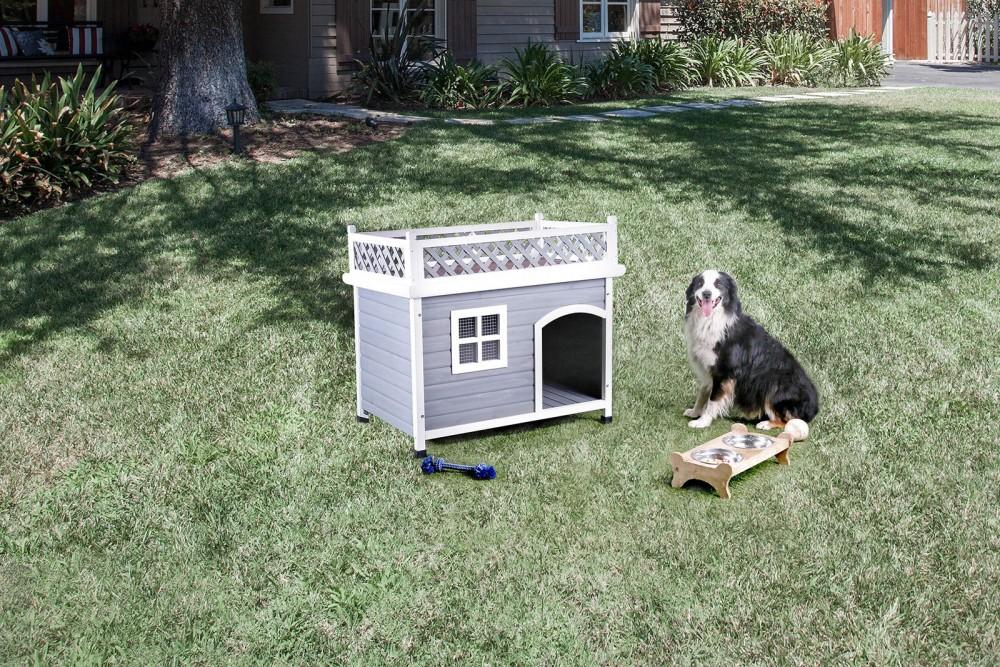 Cayuga - Pet House