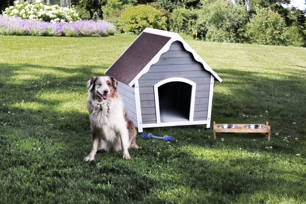 Carrington - Pet House