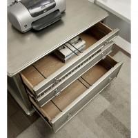Aine - File Cabinet