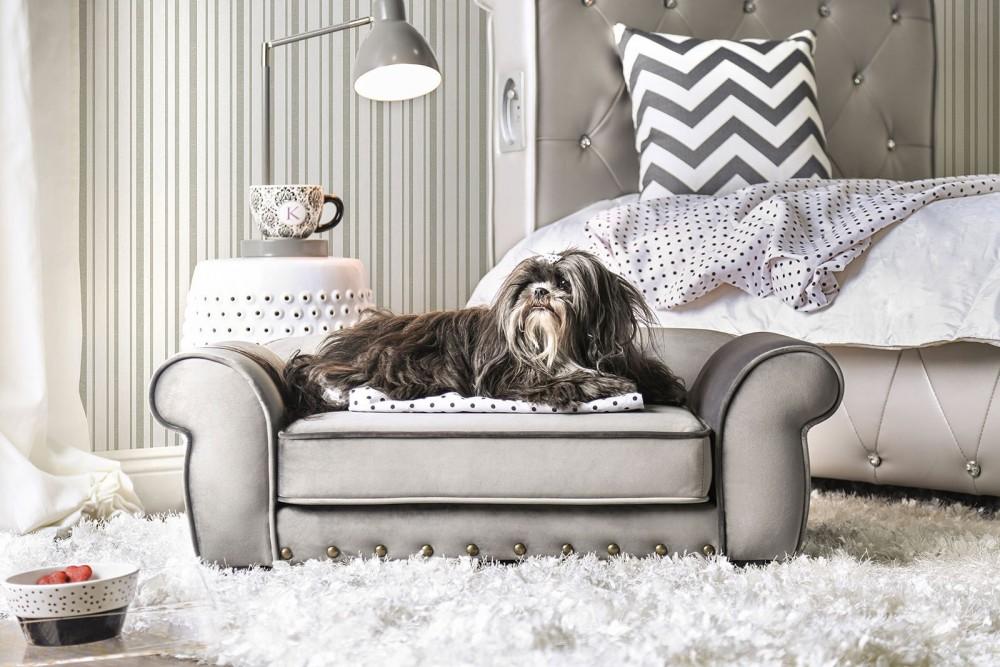 Carey - Pet Sofa