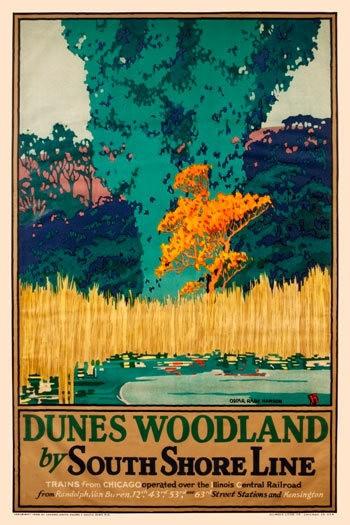 Dunes Woodland