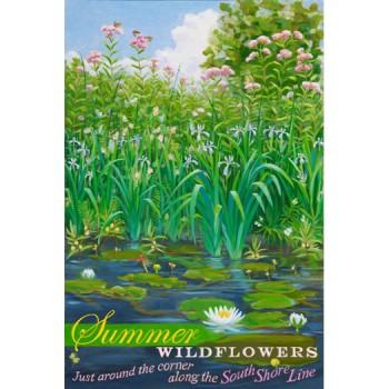 Summer Wildflowers