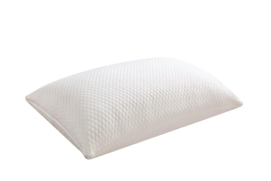 PILLOWS - 12pk Qn Shredded Foam Pillow (Pack of 12)