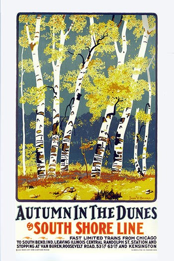 Autumn in the Dunes