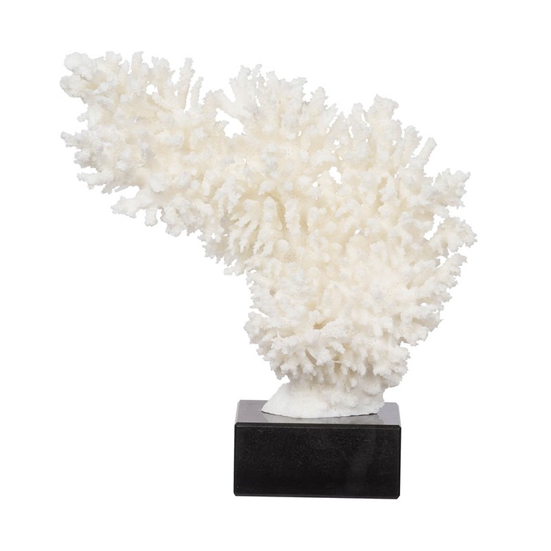 Coral D�cor On Marble Base