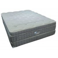 Sealy Evolution Atlanta Queen Bed