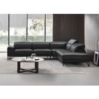 Vigore Leather Sectional