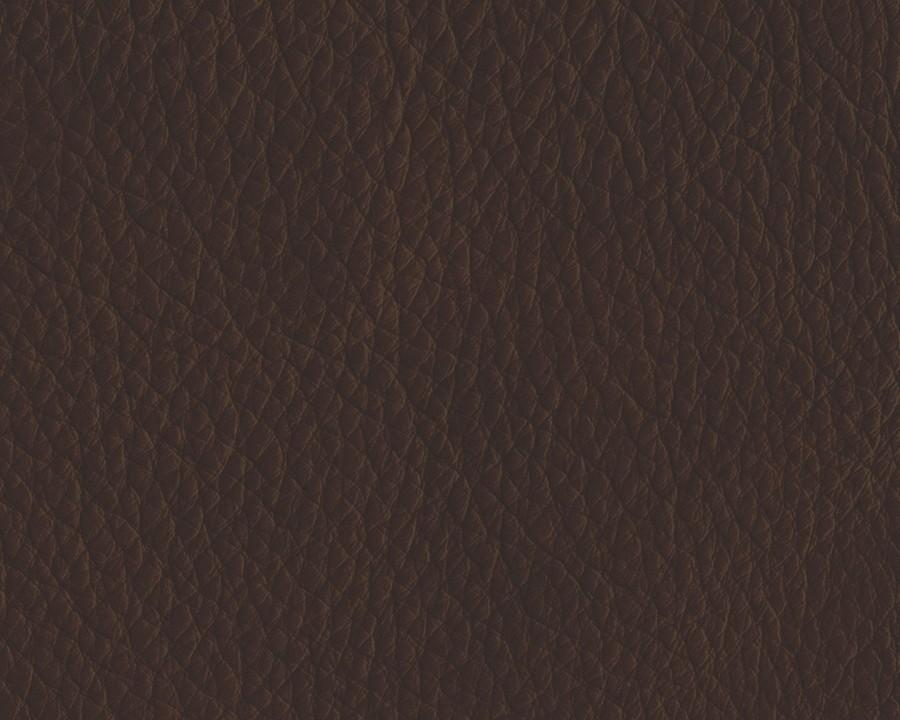 Damacio Dark Brown 2 Seat Reclining Power Sofa Leather