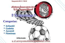 Udarroyomolinoscartel1718