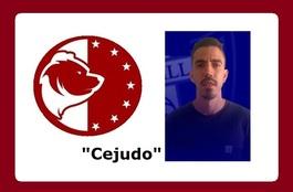 Cejudoursaria1920p