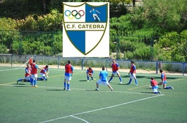 Catedraamistosos2014